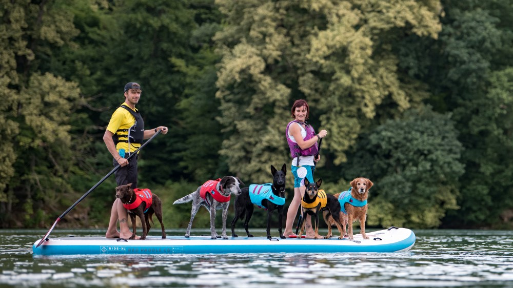 Christine Brugger SUP-DOG